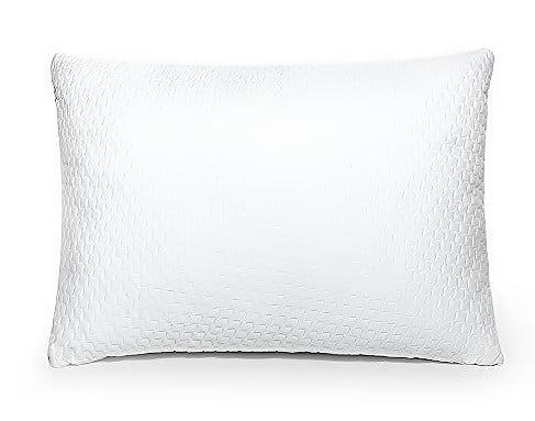Sable Back Support Washable Bamboo Cover Queen Pillow