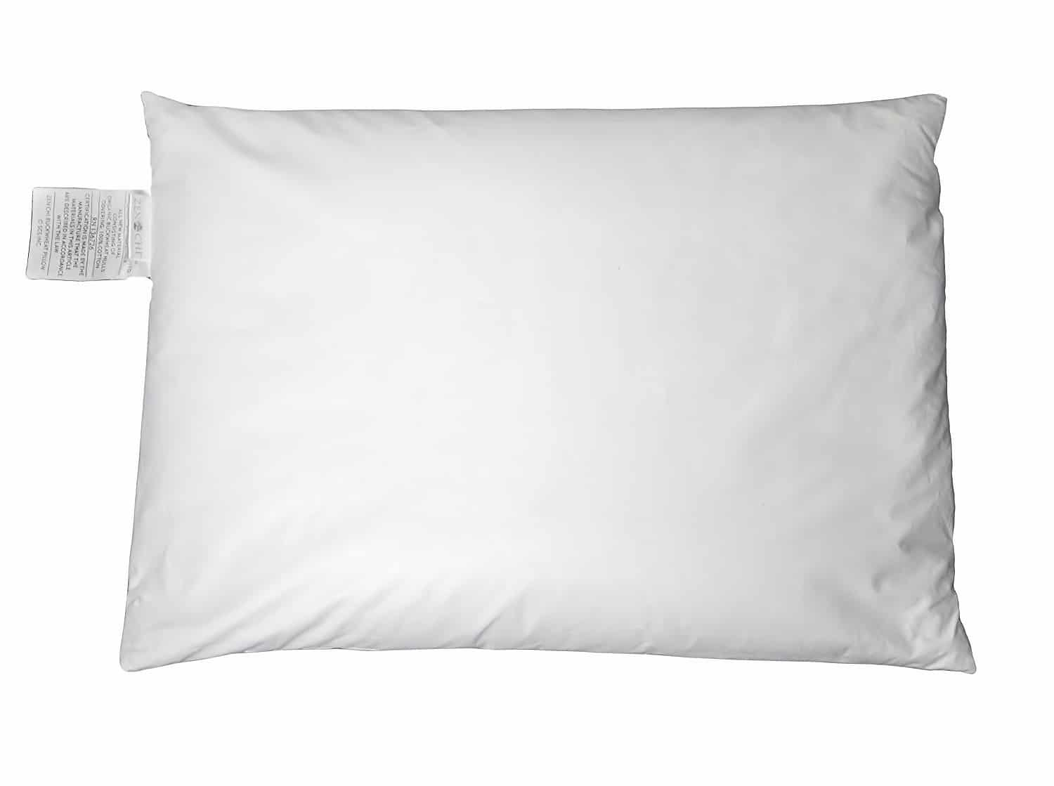Zen Chi Buckwheat Organic Natural Cooling Pillow