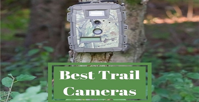 Best Trail Cameras