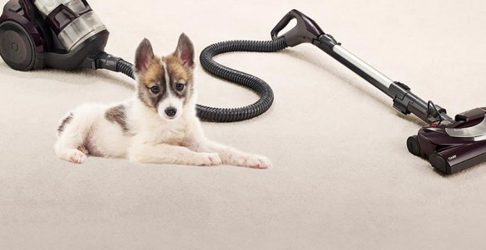 Vacuums for Pet Hair