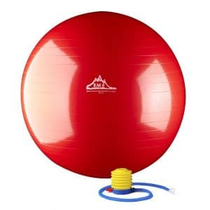 Best Exercise Ball and Buy Guide 4