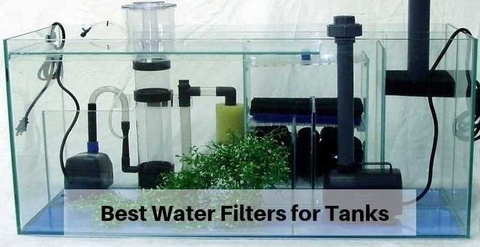 Best Water Filters for Tanks