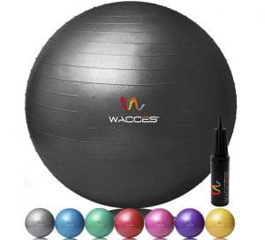 Wacces Exercise Ball 4