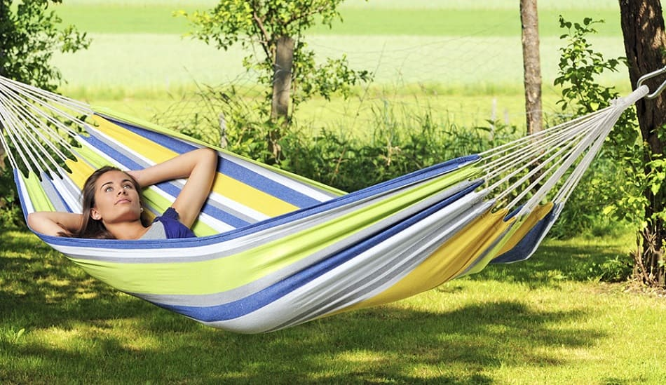 Free from Bedbugs with hammock