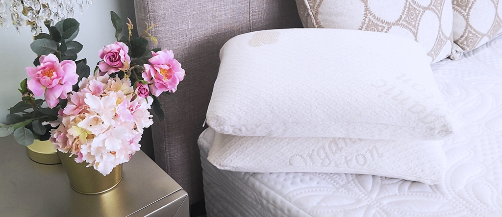 Hypoallergenic with Buckwheat Pillow
